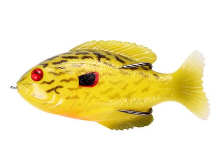 Bloody Sunfish011#