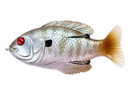 Bloody Sunfish012#