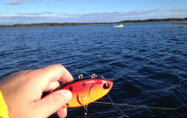 Our lure fishing real case 4